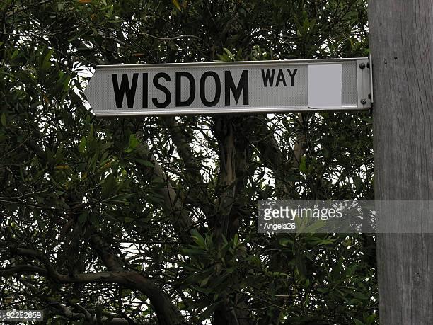 ウィズドムウェイの道路標識