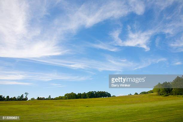Wispy clouds on blue sky above green lawn