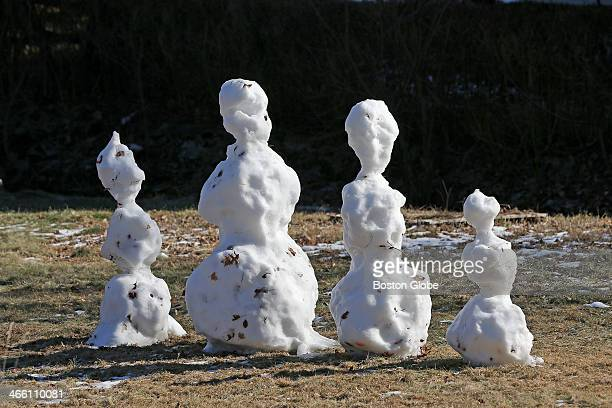 With warm sun cold temperatures and very little snow this snowman family standing in a yard in Milton is beginning to melt