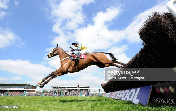 Witness in Court ridden by Noel Fehily wins The Marie Turner Easter Bonnet Memorial Novices Limited Handicap Steeple Chase during the Magic and...