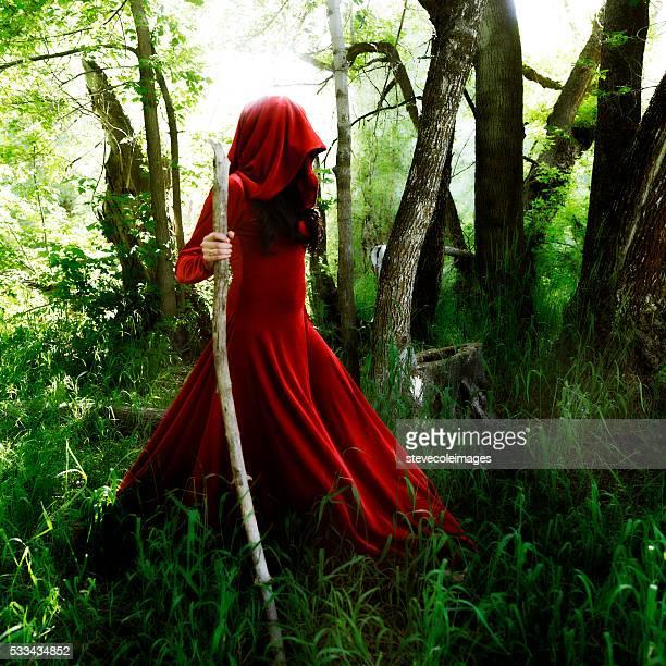 Wizard walking in Forrest
