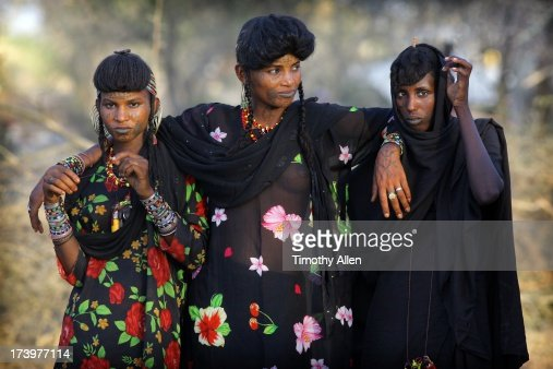 wodaabe women judges watching men dance stock photo getty images wodaabe women judges watching men dance stock photo