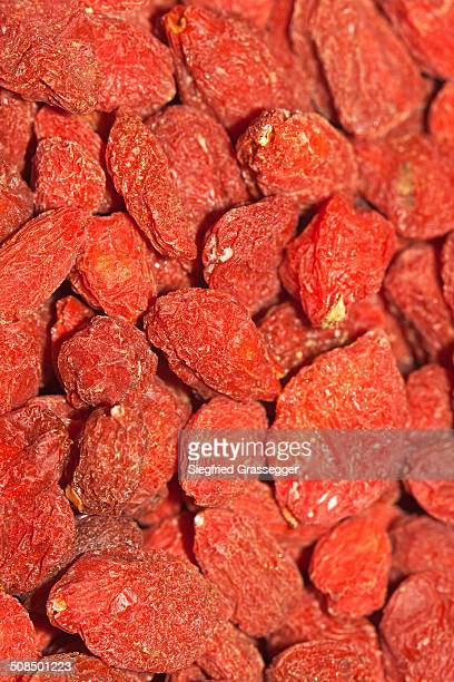 Wolfberries or Goji Berries -Lycium barbarum-, part of Chinese cuisine and traditional Chinese medicine