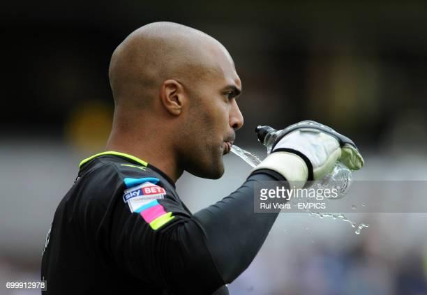 Wolverhampton Wanders goalkeeper Carl Ikeme