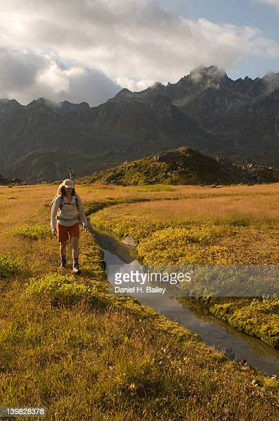 Woman, 40s, hiking in the backcountry with a backpack over the late summer colored tundra by a stream in the Talkeetna Mountains, Alaska