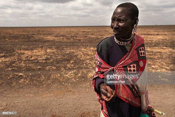 A woman a member of the Maasai ethnic group follows her family as they move with their cattle in search of grassland to graze their herd on August 16...