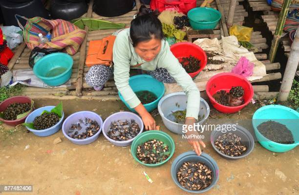 A woman adjust her fresh water insect for sale at a market in Dimapur India north eastern state of Nagaland on Wednesday 22 November 2017