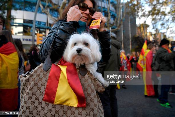 A woman along with a dog attends a demonstration organised by fascist movements in Artos Square in Barcelona on November 18 2017 on the sidelines of...