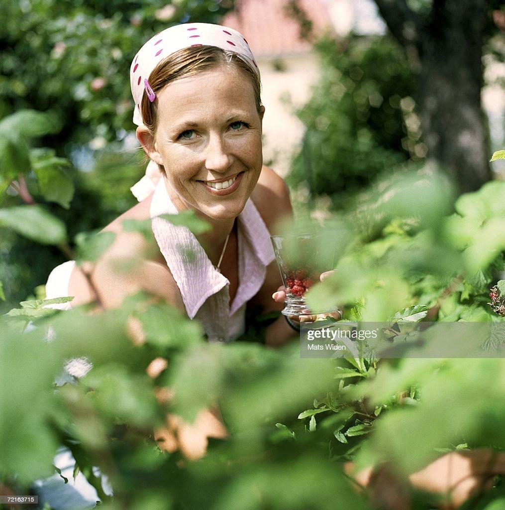 Woman among raspberry bushes.