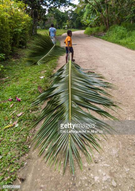 A woman and a boy carrying palm leafs on road Shefa Province Efate island Vanuatu on August 23 2007 in Efate Island Vanuatu