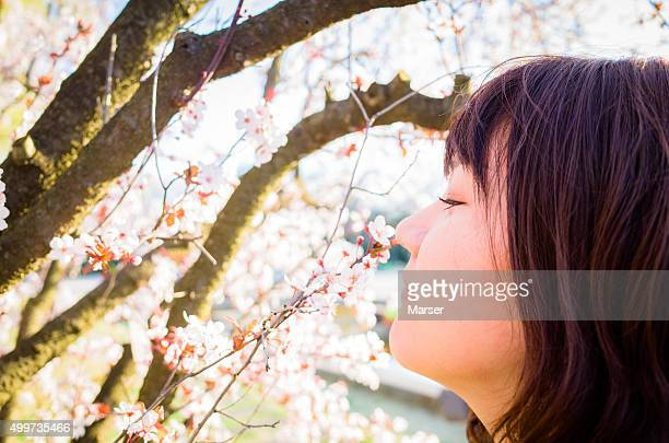 A woman and cherry blossoms