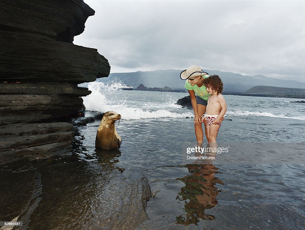 Woman and child getting close-up look at a seal