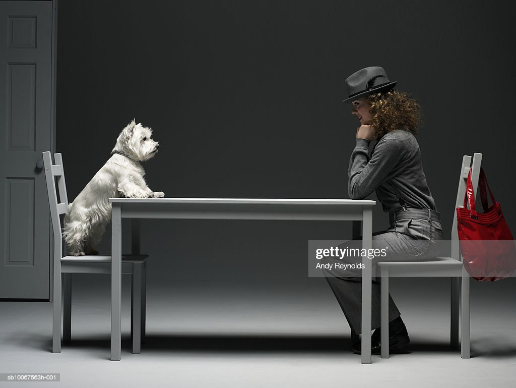 Woman and dog sitting on chair at table, face to face, side view : Stock Photo