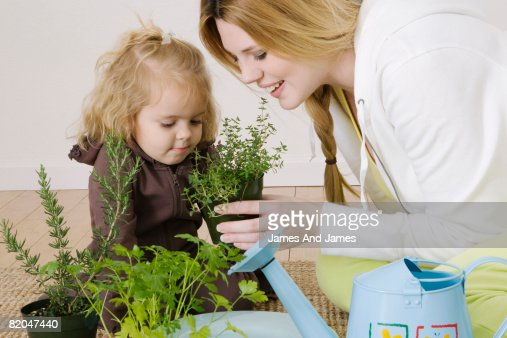 Woman and girl planting herbs : Stock Photo