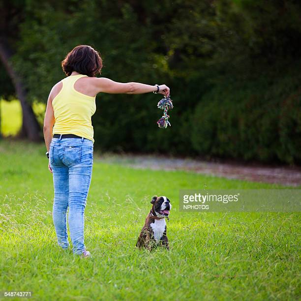 Woman and her boxer dog