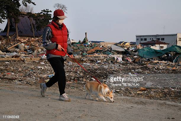 A woman and her dog walk past the devastation caused by the massive earthquake and tsunami on March 28 2011 in Ishinomaki City Miyagi Prefecture...