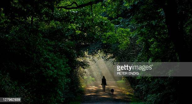A woman and her dog walk through a ray of sunlight in Leipzig eastern Germany on September 26 2011 Meteorologists forecast sinking temperatures for...