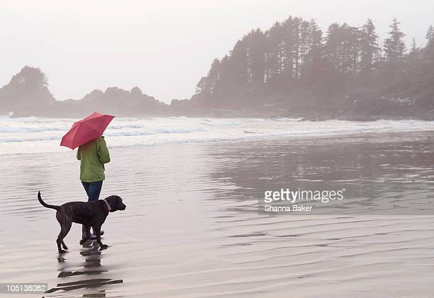 A woman and her dog walking along a beach