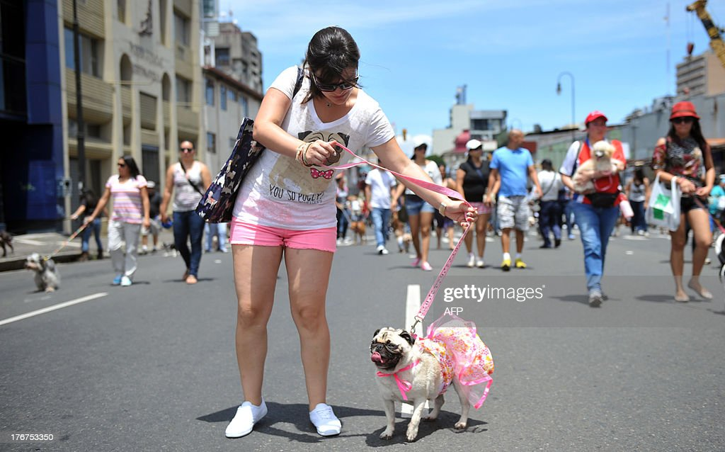 A woman and her pet participate in a parade in support of a bill penalizing cruelty against domestic and wild animals waiting to be discussed by the Legislative Assembly, in San Jose, on August 18, 2013. AFP PHOTO/Hector RETAMAL