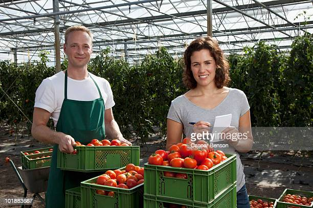 A woman and man standing behind crates of fresh tomatoes working in a greenhouse