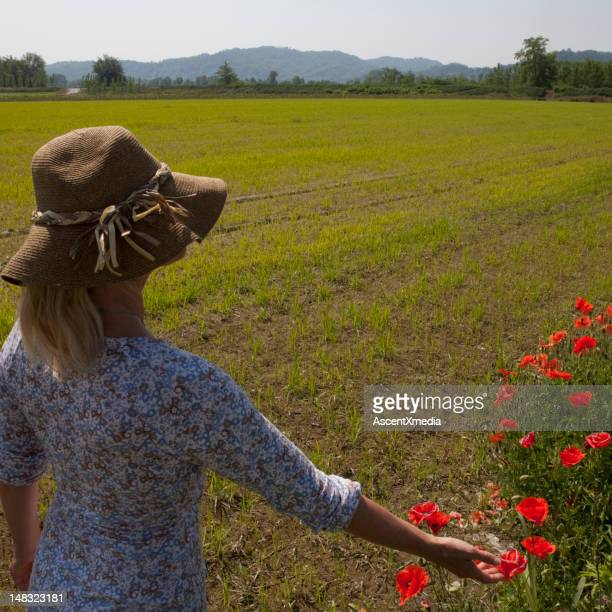 Woman and poppies in a newly planted rice field