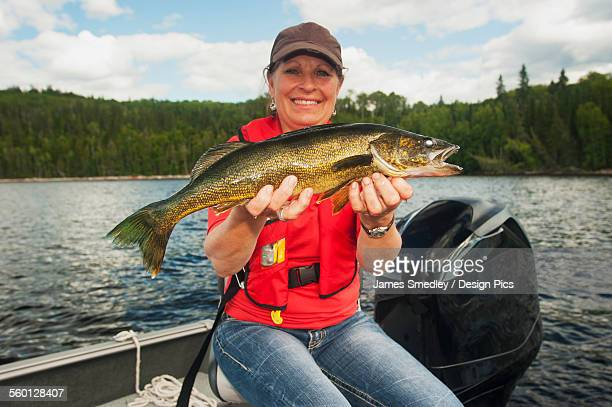 Woman angler holds a summer walleye