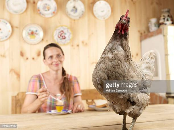 Woman at breakfast table with chicken