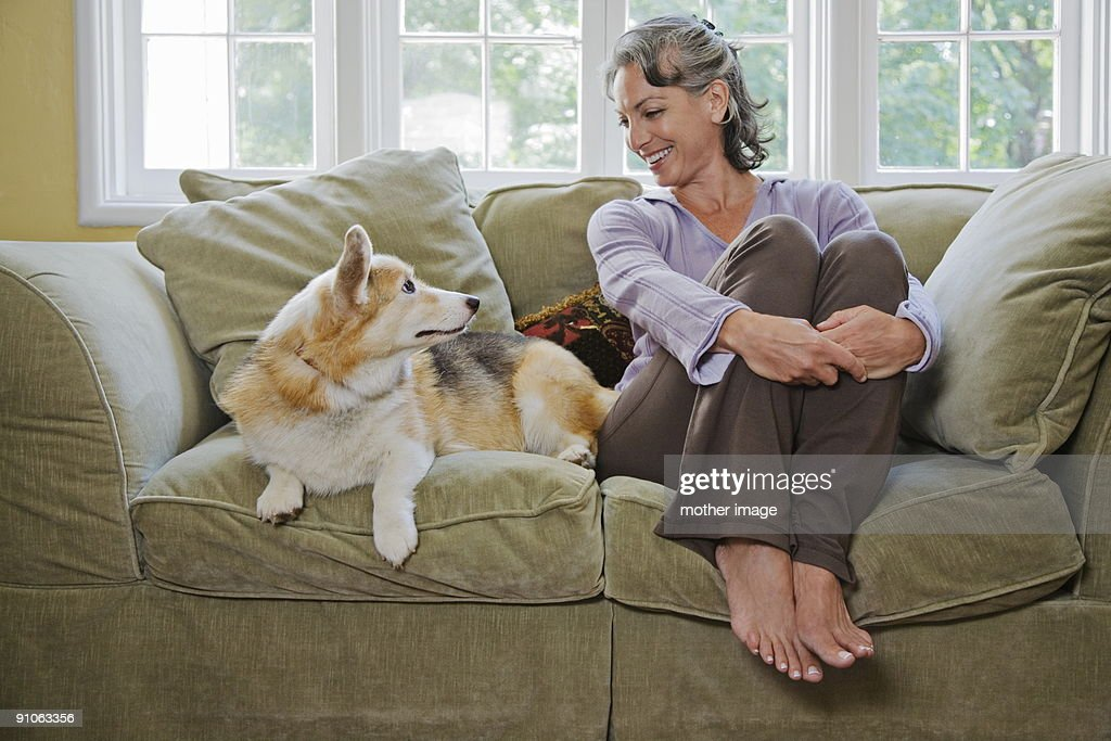 Woman at home with pet : Stock Photo