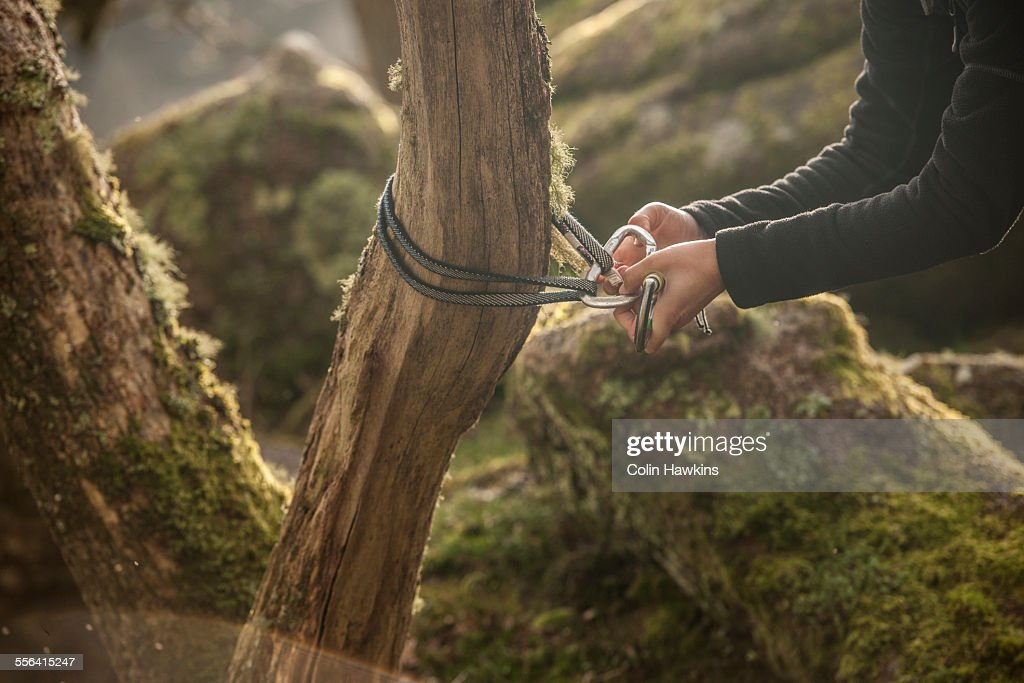Woman attaching carabiner and rope to tree trunk