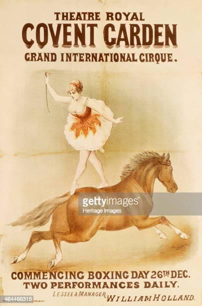 Woman bareback rider Circus performer balancing on a galloping horse