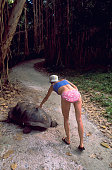 Woman Bending Over to Touch Tortoise