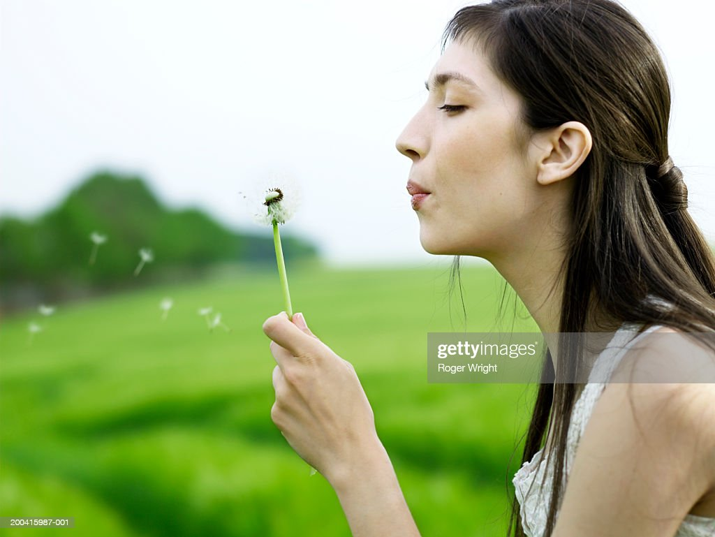 Woman blowing dandelion in field, side view
