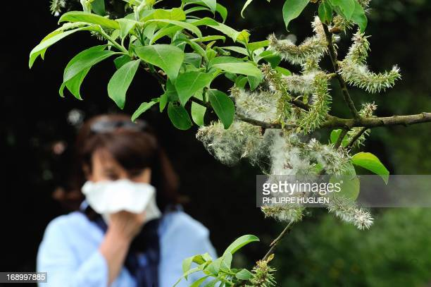 A woman blows her nose in Godewaersvelde northern France on May 18 as the return of pleasant weather marks the arrival of allergenic pollen AFP PHOTO...