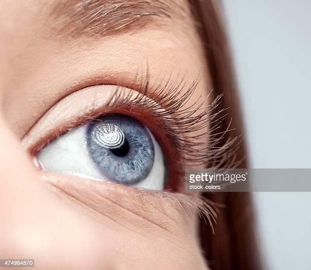 Blau Frau Auge Makro