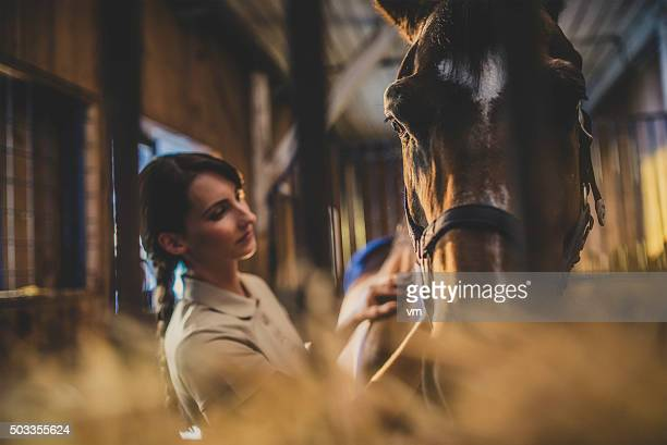 Woman brushing a horse's head in a stable