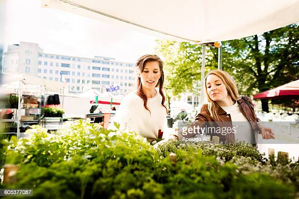 Woman buying plants on display at store