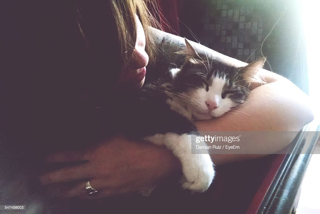 Woman Caring Sleepy Cat At Home