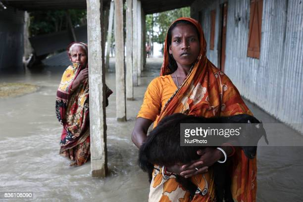 A woman carries her cattle as she moves to safer ground at Islampur Jamalpur Bangladesh on 19 August 2017