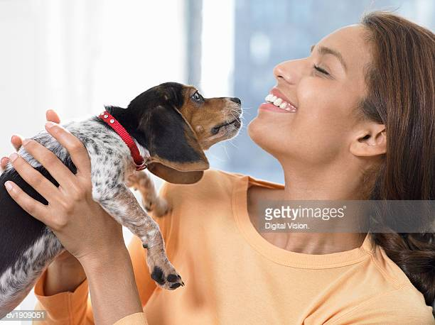Woman Carrying a Beagle Puppy, Beagle Smelling Her Face