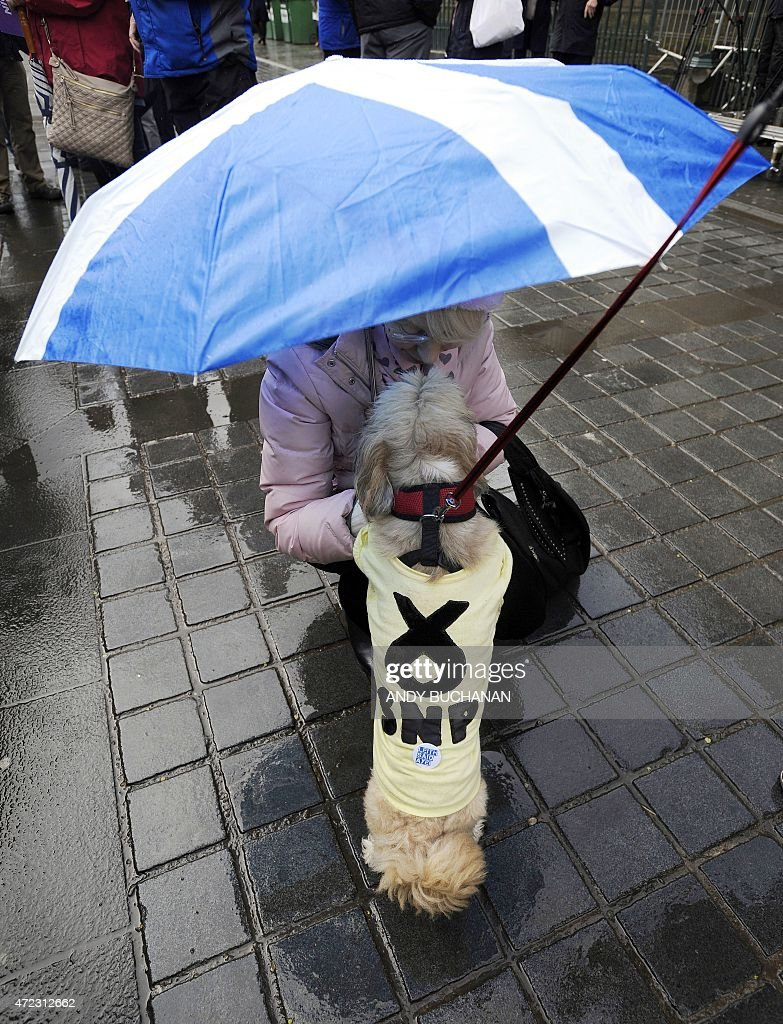 a woman carrying an umbrella of the scottish flag pets a dog with