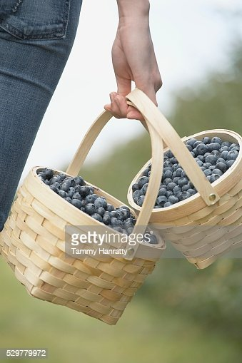 Woman carrying baskets of blueberries : Foto stock