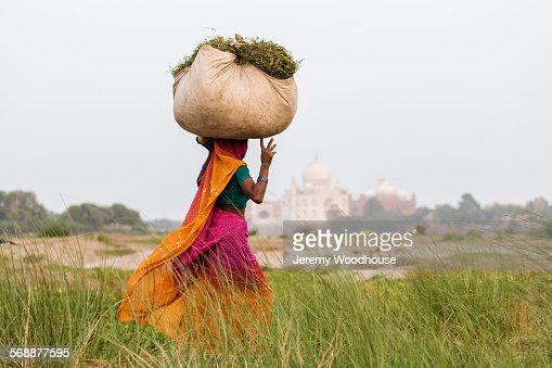 Woman carrying grass fodder home for her buffalo