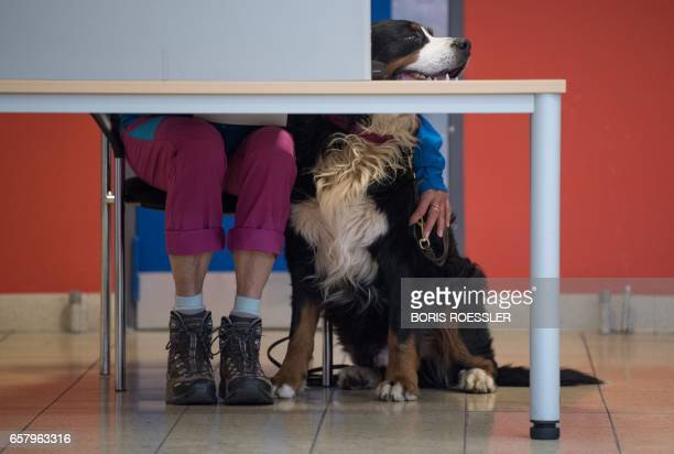 A woman casts her ballot with her dog at a polling station in Nunkirchen southwestern Germany on March 26 2017 Voters went to the polls in the tiny...