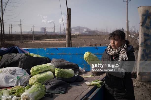 A woman checks a Chinese cabbage at a local market set up near steel factories in Tangshan on March 2 2017 China said on March 1 it will cut 500000...