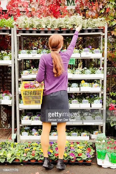 Woman chooses plant in plant nursery.