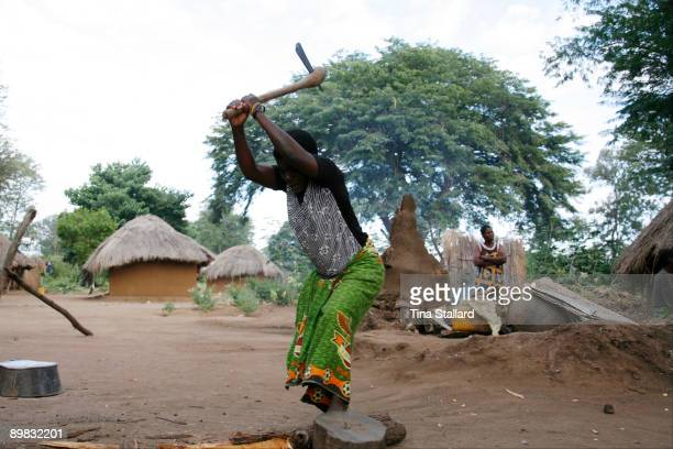 A woman chops firewood in Fwalu village just outside South Luangwa National Park Women from the village spend around three days a week gathering...
