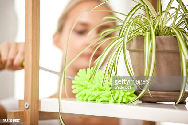 Woman cleansing shelf with potted plant
