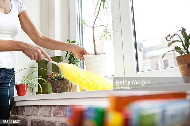 Woman cleansing windowsill with feather duster