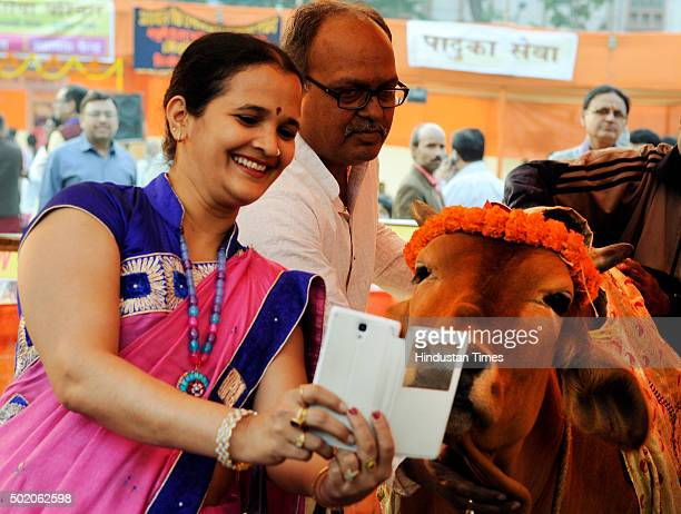 A woman clicking a selfie with a cow during 'Selfie with Cow' a photo contest which was organized by Go Seva Parivar on December 20 2015 in Kolkata...