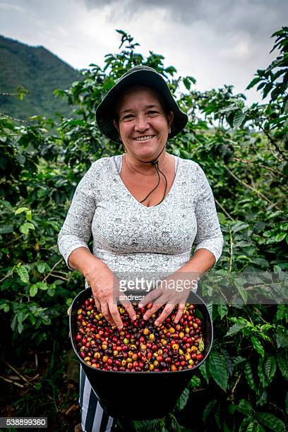 Woman collecting Colombian coffee at a farm